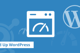 WordPress Speed Up